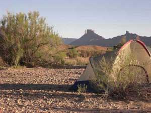 tent2080